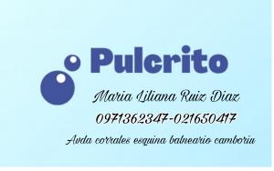 Disribuidora Pulcrito